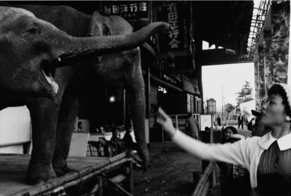 "Akira Tanno ""Circus of Showa Japan 1956-1957"""